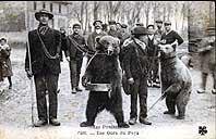 Carte Postale Ancienne : montreurs d'ours dans les Pyrénées